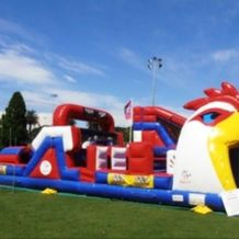Rooster Obstacle Course